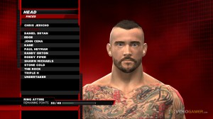 cm_punk_superstar_head