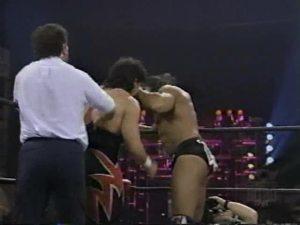 November_13,_1995_Monday_Nitro.00013